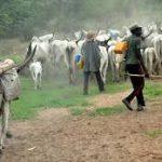 Fulani herdsmen: Bayelsa warns against politicization of grazing area   …says security implications informed decision, not politics