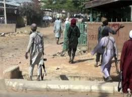 Members of Nigerian terror group Boko Haram raided a village in northeastern Nigeria to steal food and medical supplies on Frida