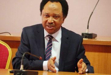 Why we rejected Buhari's $29.96bn loan request under Saraki — Shehu Sani