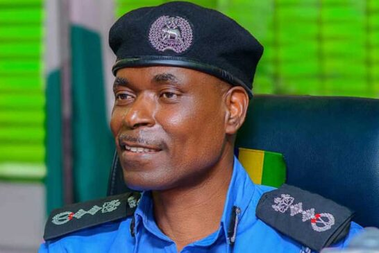 South-East Governors, IGP At Loggerheads Over Community Policing By  BIGPEN -