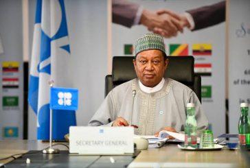 Nigeria's 50th Anniversary Membership of OPEC excites members